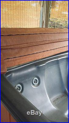 Balboa hot tub excellent working condition no reserve. $850.00 or best offer